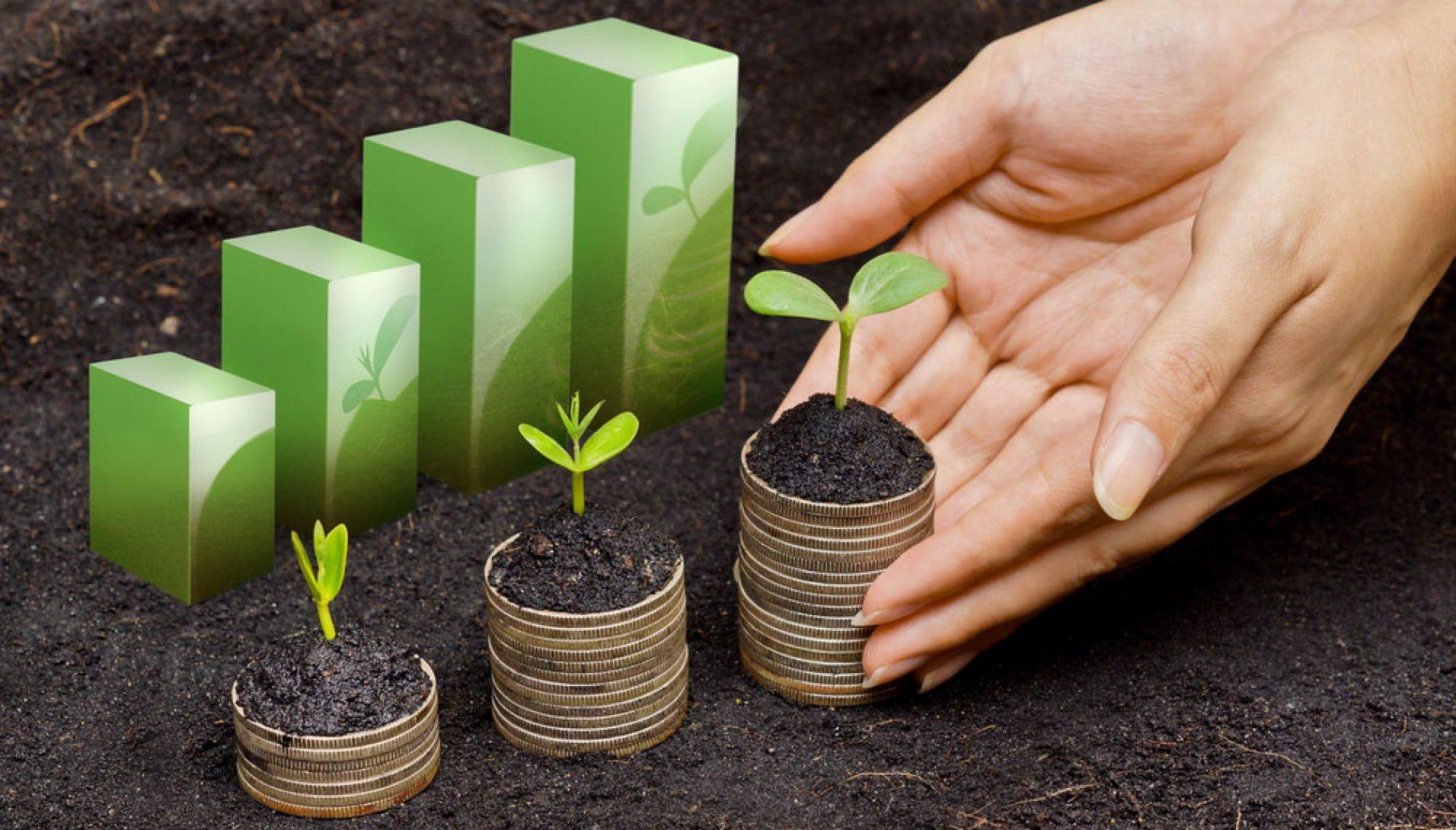 ZeroImpactLab: progetto per startup innovative nel settore ambiente