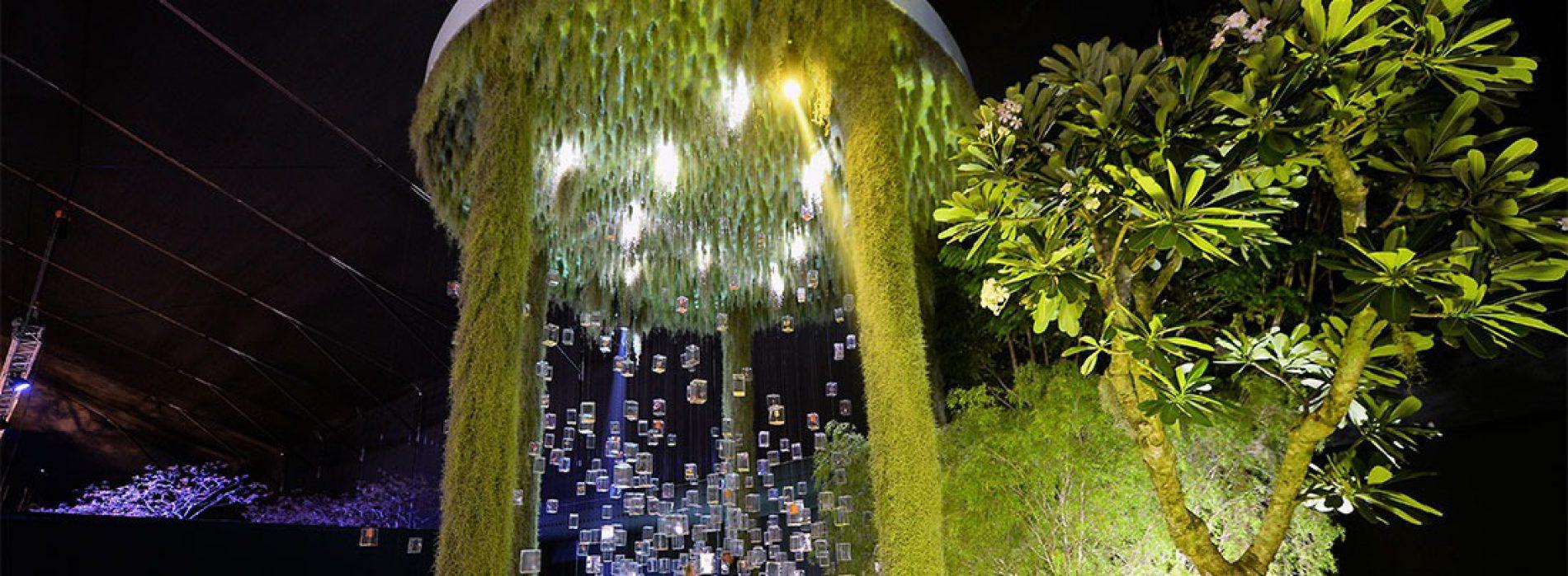 Paesaggista fiorentino premiato a Singapore