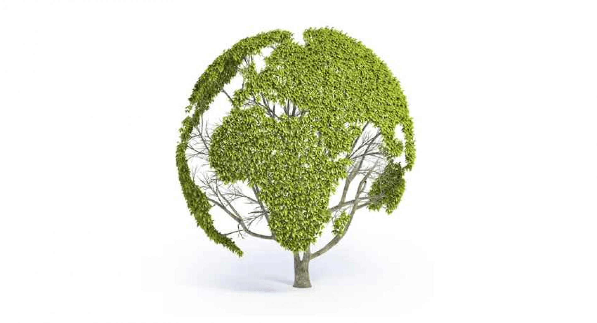 Valutazione Impatto Ambientale: le Regioni chiedono più chiarezza