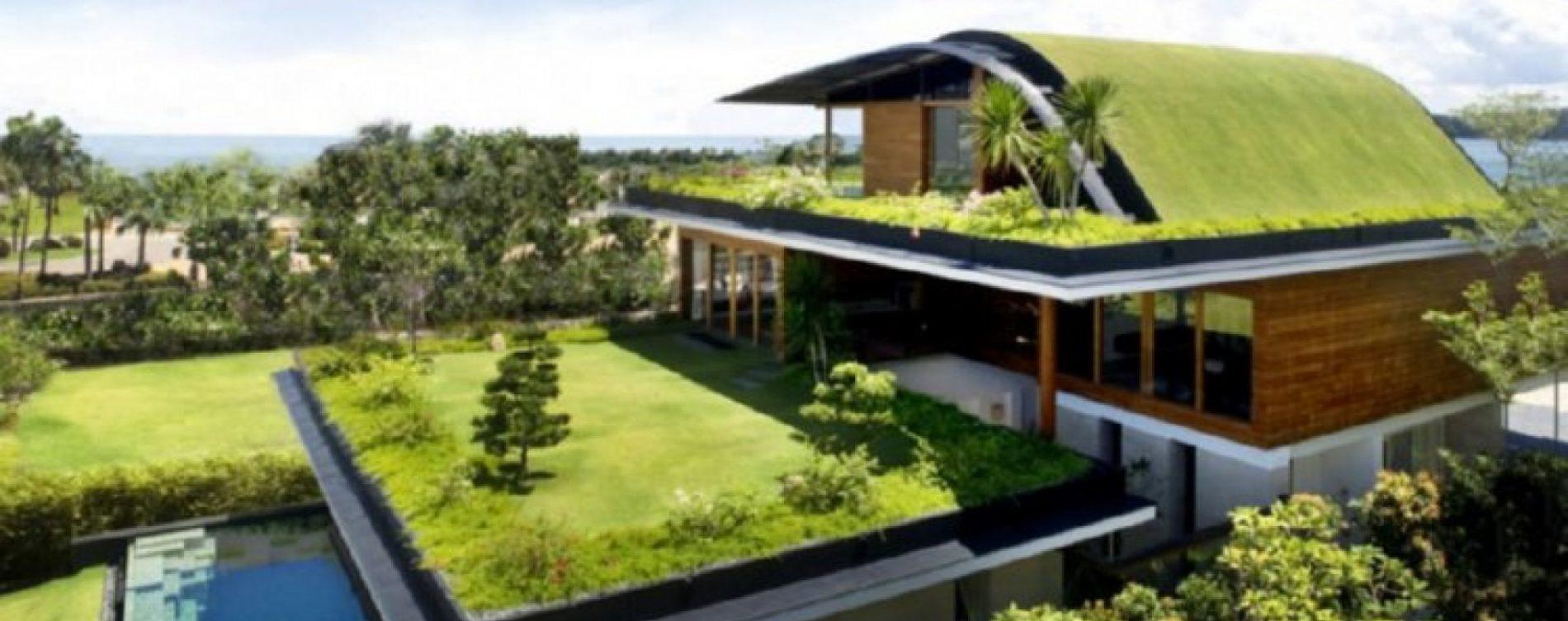 "In crescita i ""tetti verdi"""