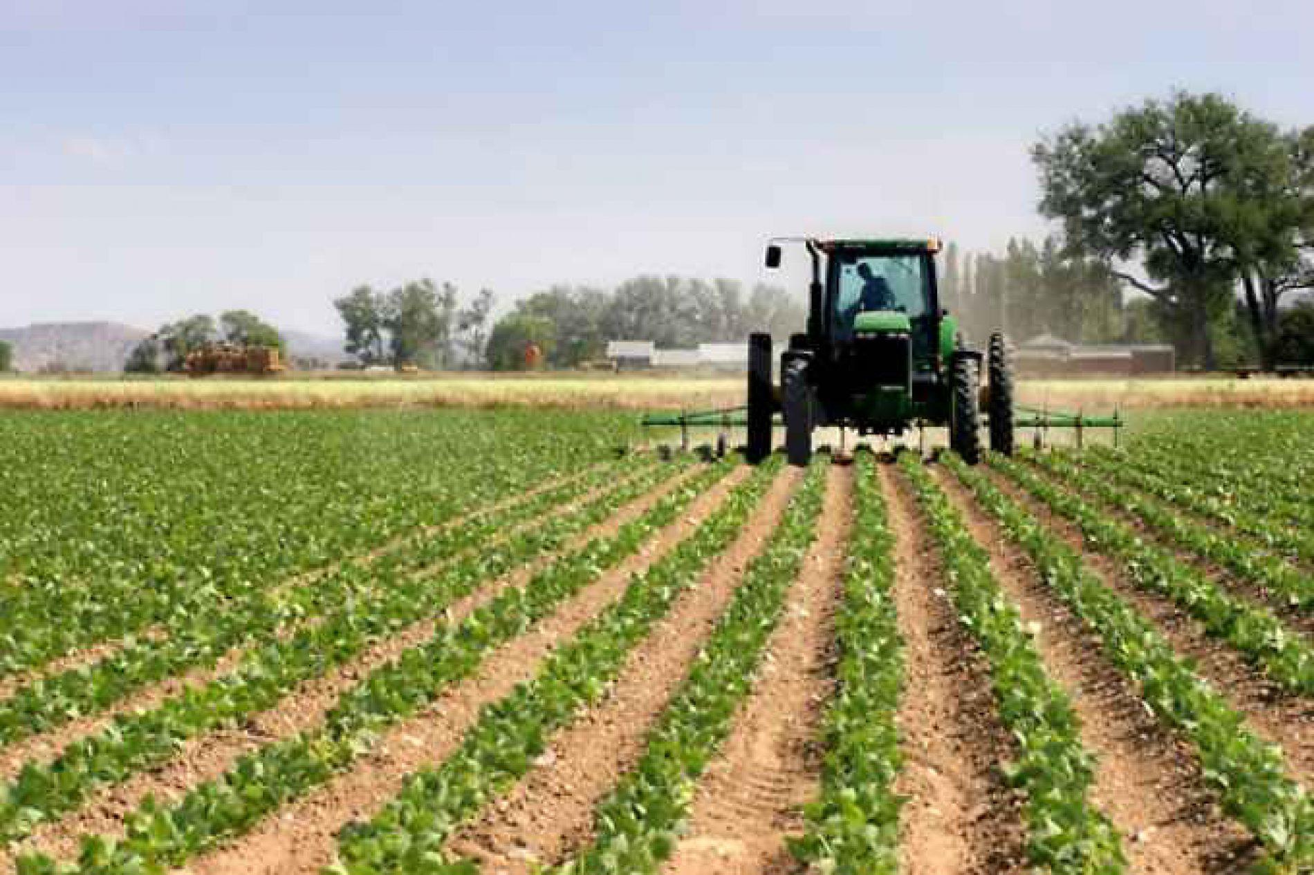 Come ottenere l'esenzione IMU per terreni agricoli